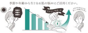 %e5%8e%9f%e6%b6%b2%e3%82%b7%e3%83%aa%e3%83%bc%e3%82%ba2